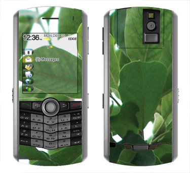 BlackBerry Pearl 8100 Skin :: Summer Leaves