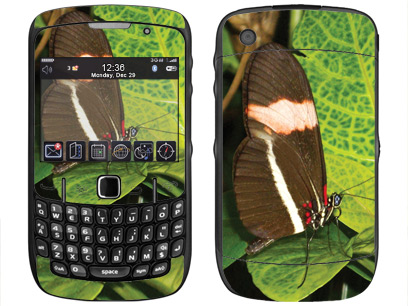 BlackBerry Curve 8520, 8530 Skin :: Butterfly 1