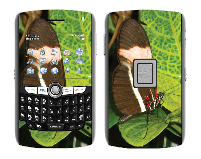 BlackBerry World 8800 Skin :: Butterfly 1