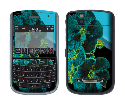 BlackBerry Tour 9630 Skin :: Cosmic Flowers 2