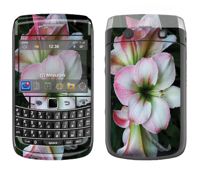 BlackBerry Bold 9700 Skin :: Floral Grace