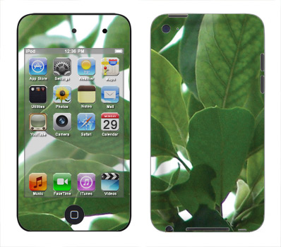 Apple iTouch 4th Gen Skin :: Summer Leaves