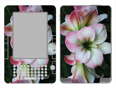 Amazon Kindle 2 Skin :: Floral Grace