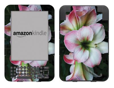 Amazon Kindle 3 Skin :: Floral Grace