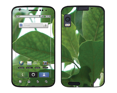 Motorola Atrix Skin :: Summer Leaves