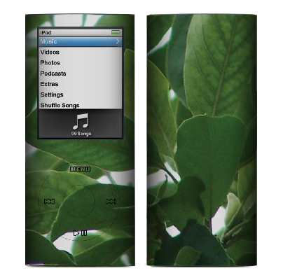 Apple Nano 4th Gen Skin :: Summer Leaves