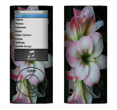 Apple Nano 5th Gen Skin :: Floral Grace