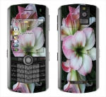 BlackBerry Pearl 8100 Skin :: Floral Grace