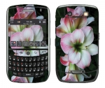 BlackBerry Curve 8900 Skin :: Floral Grace