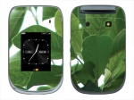BlackBerry Style 9670 Skin :: Summer Leaves