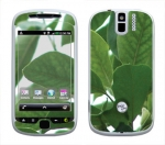 HTC myTouch 3G Slide Skin :: Summer Leaves
