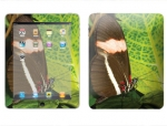 Apple iPad Skin :: Butterfly 1