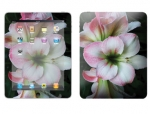 Apple iPad Skin :: Floral Grace