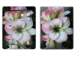 Apple iPad 2 Skin :: Floral Grace