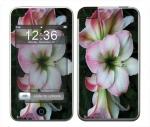 Apple iTouch (1st Gen) Skin :: Floral Grace