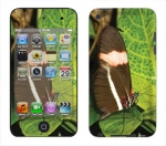 Apple iTouch 4th Gen Skin :: Butterfly 1