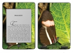 Amazon Kindle Touch Skin :: Butterfly 1
