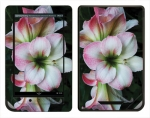 Barnes & Noble Nook Color Skin :: Floral Grace