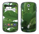 Samsung Epic Skin :: Summer Leaves